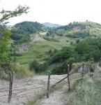 Buzau, com. Bisoca, sat Sarile, zacamant Muntele de Sare (2)