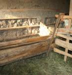 Buzau, com. Lopatari, sat Luncile, fam. Bascenel (14)