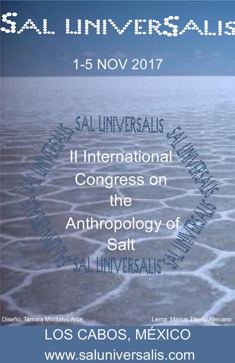 2nd-Japan-Romania-Seminar-on-Salt-Studies