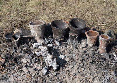 21_Fierberea slatieni in briquetaje_2019